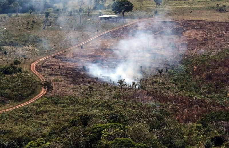 A handout picture from Colombia's Defence Ministry shows smoke billowing from the Sierra de La Macarena National Natural Park, C
