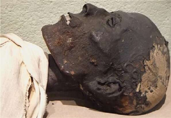 A non-destructive method for analyzing Ancient Egyptian embalming materials