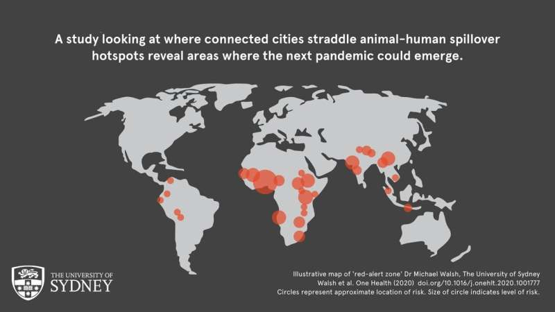 Areas where the next pandemic could emerge are revealed