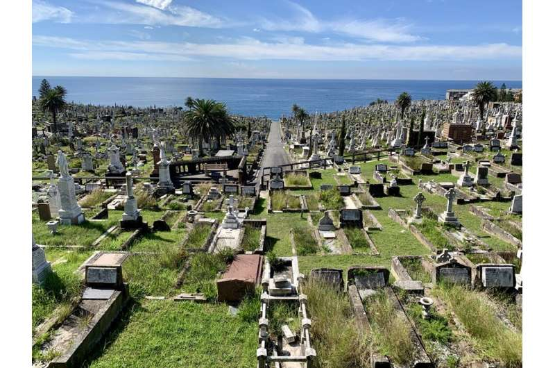 Ashes to ashes, dust to ... compost? An eco-friendly burial in just 4 weeks