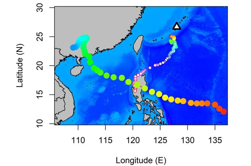 Birds of a feather flock together, but timing depends on typhoons
