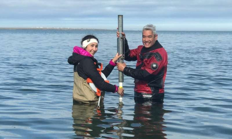 Coastal permafrost more susceptible to climate change than previously thought