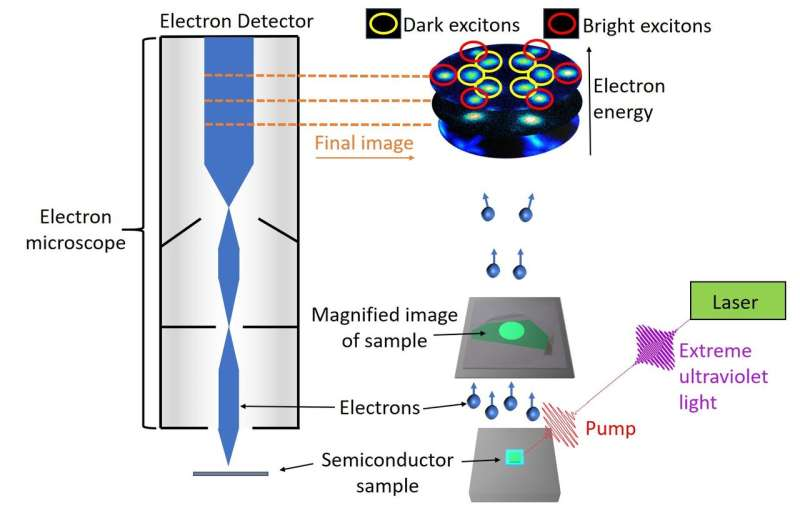 Dark excitons hit the spotlight