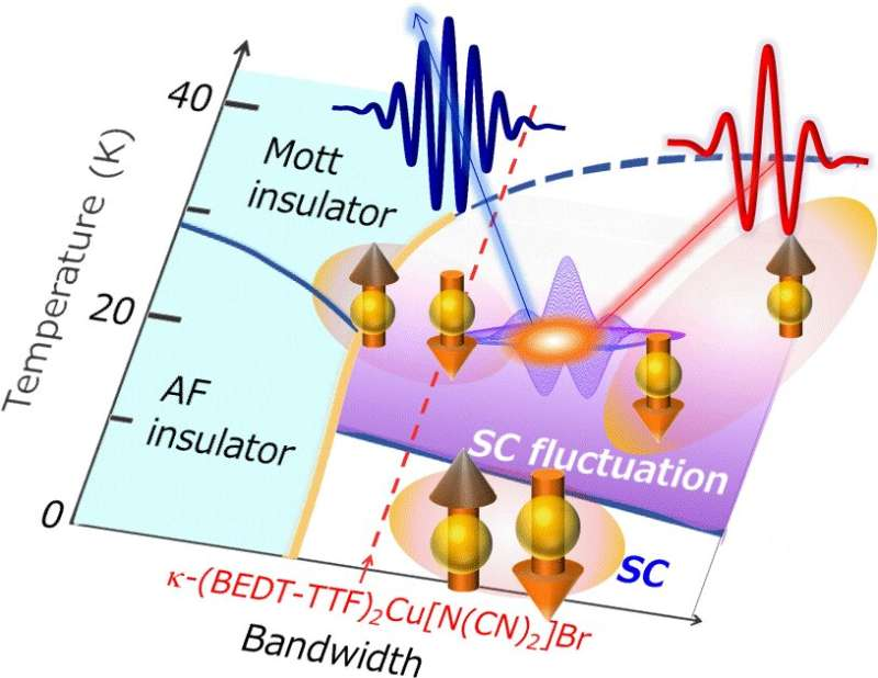 Electric current is manipulated by light in an organic superconductor