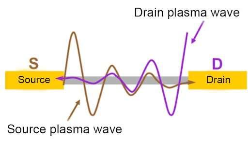 Graphene detector reveals THz light's polarization