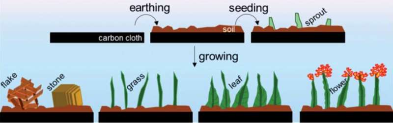 Harvesting hydrogen from nanogardens