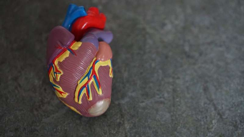 Give the heart a ketone? It may be beneficial thumbnail
