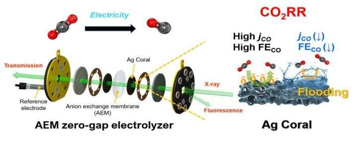 High-performance large area electrode system developed for artificial photosynthesis