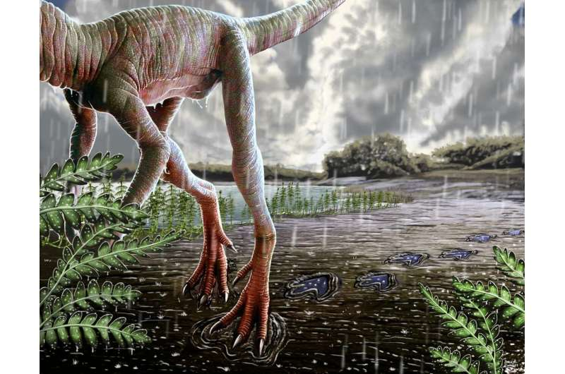 Insights into climate change during origin of dinosaurs