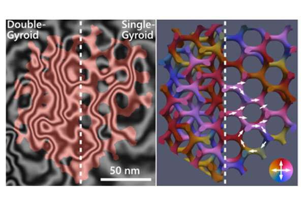 Intricate Magnetic Configuration of 3D Nanoscale Gyroid Networks Revealed
