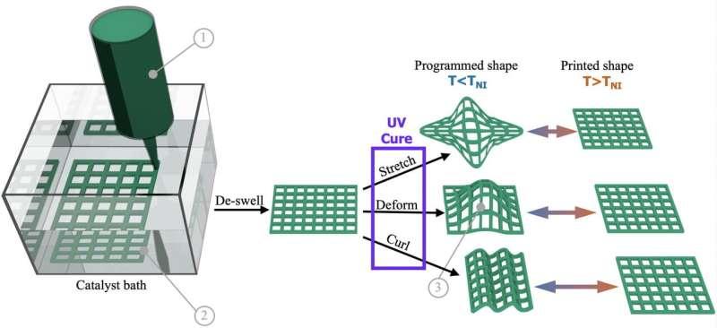Lab makes 4-D printing more practical