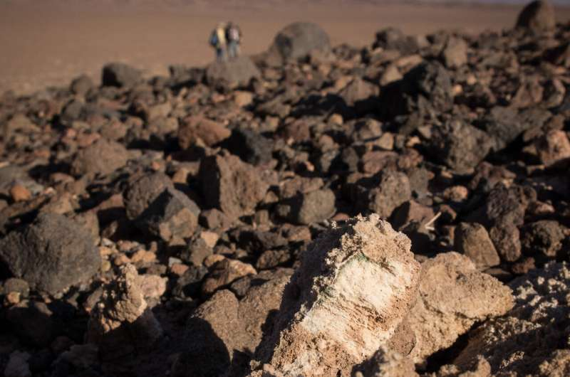 Life on the rocks helps scientists understand how to survive in extreme environments