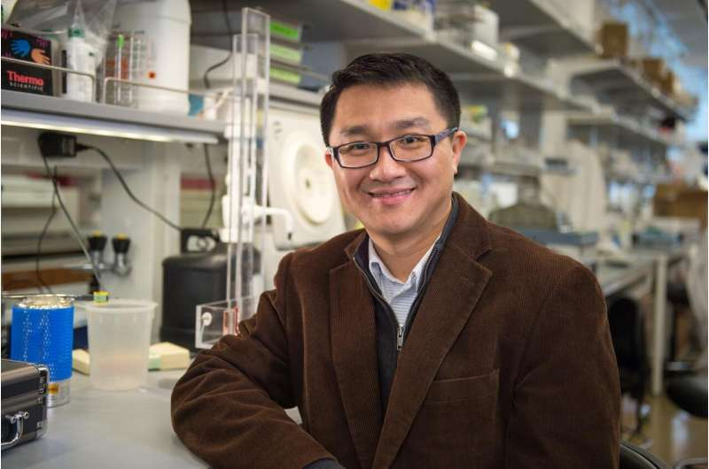 New mechanism of cell survival in chronic lymphocytic leukemia
