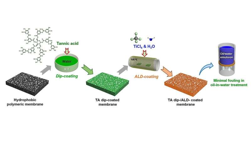 Polymer membranes could benefit from taking a dip
