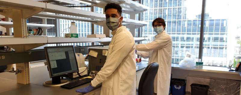 Scientist develops new way to test for COVID-19 antibodies