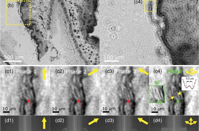 Super-resolution imaging with diagonal sampling