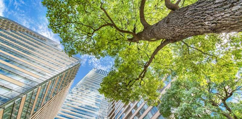 Sustainable start-ups should consider corporate venture capital first
