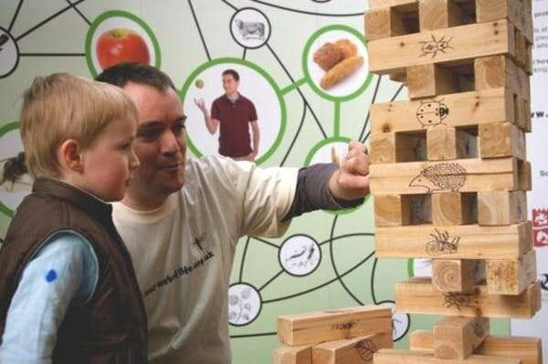 Wildlife conservation needs to change – and the game of Jenga can help us seewhy