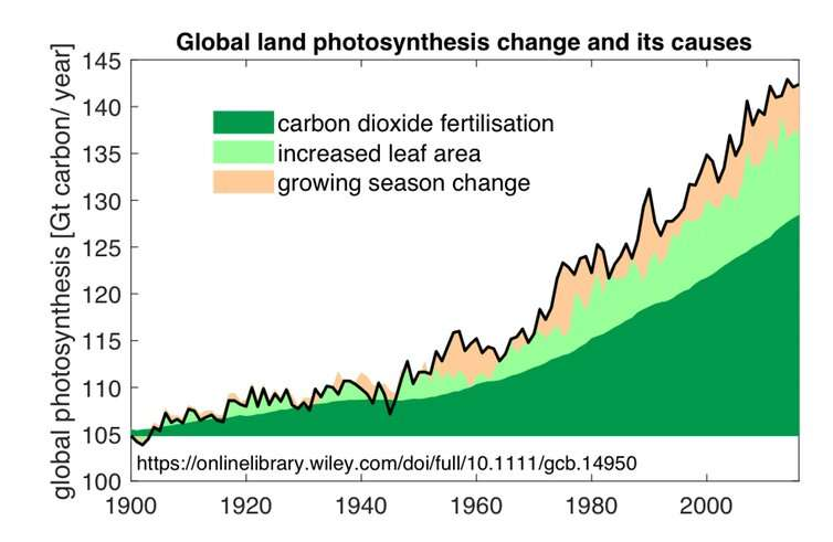 Yes, more carbon dioxide in the atmosphere helps plants grow, but it's no excuse to downplay climate change