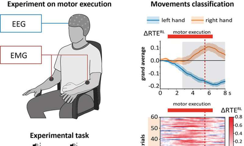 Researchers discover method to detect motor-related brain activity