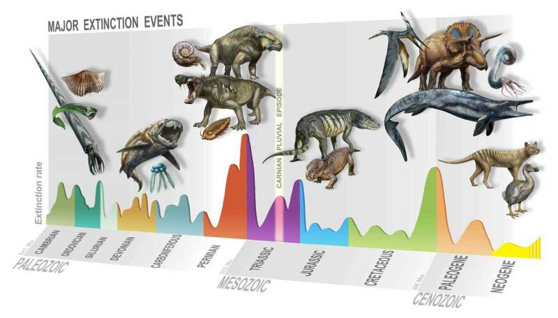 Discovery of a new mass extinction