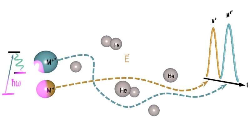 New technique to study superheavy elements
