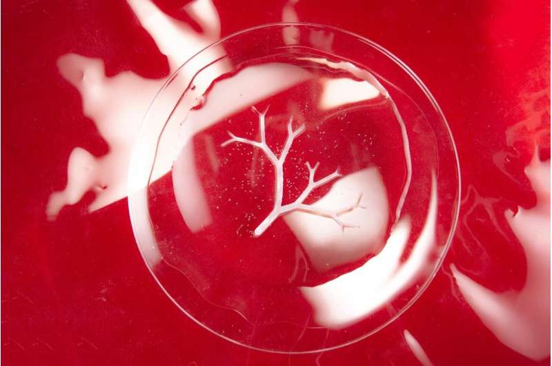 Scientists use bacteria as micro-3D printers