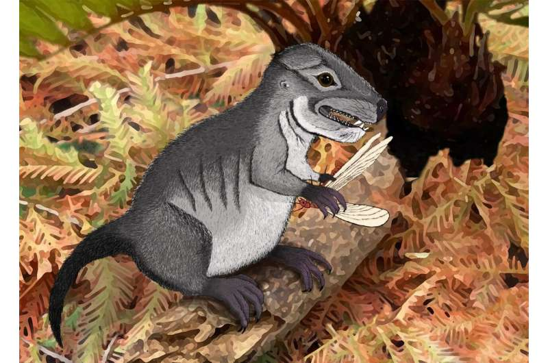 New species of ancient cynodont, 220 million years old, discovered