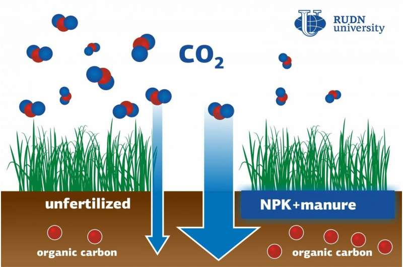 RUDN University soil scientist: Paddy soil fertilization can help reduce greenhouse effect