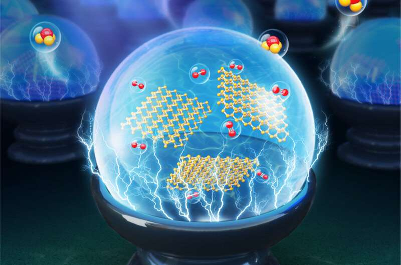 Scientists propose novel electrode for efficient artificial synthesis of ammonia