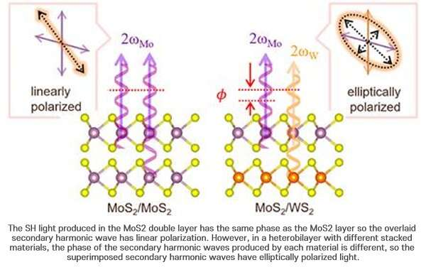 Research team identifies second-harmonics generation interference in 2-D heterobilayers
