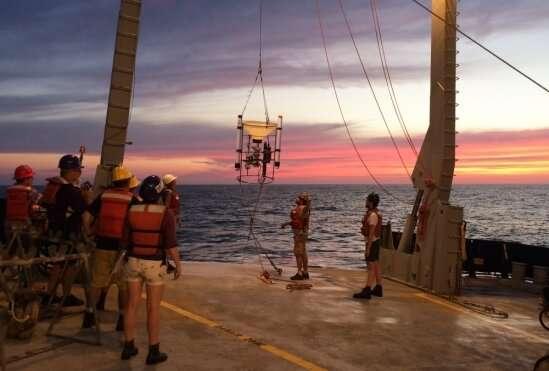 Researchers dive into the biogeochemistry of ocean anoxic zones