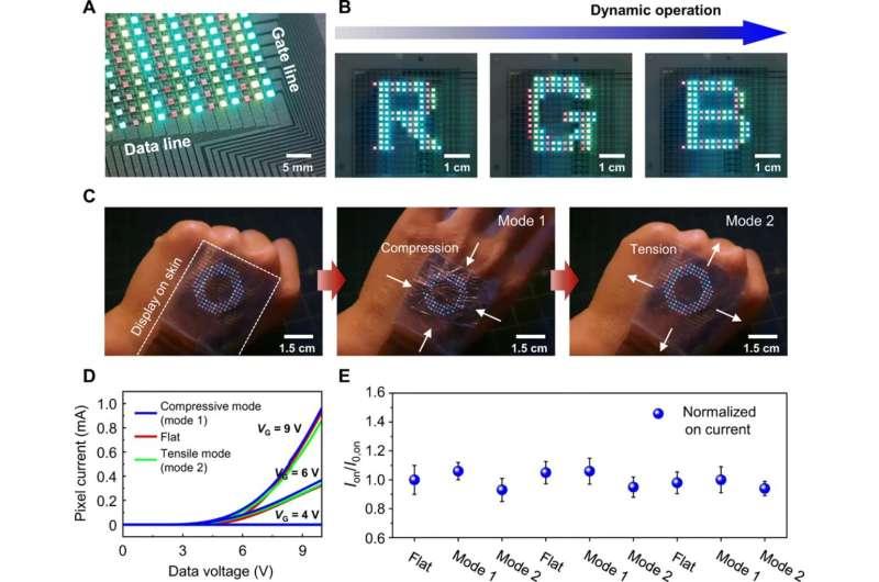 Active-matrix organic light-emitting diode display on human skin