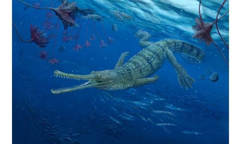 Ancient crocodiles' family tree reveals unexpected twists and turns