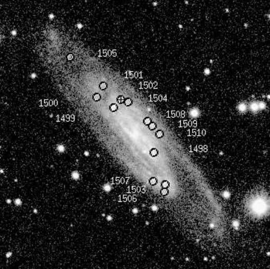 Astronomers investigate young stellar complexes in the galaxy UGC 11973