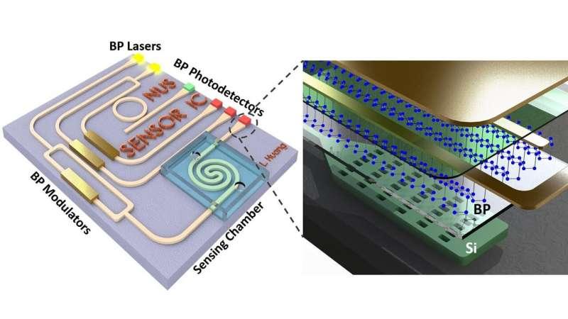 Black phosphorus future in 3D analysis, molecular fingerprinting