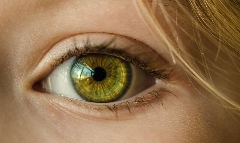 olho biônico