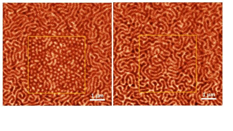 FEFU scientists explain how to storage cipher data in magnetic skyrmions.
