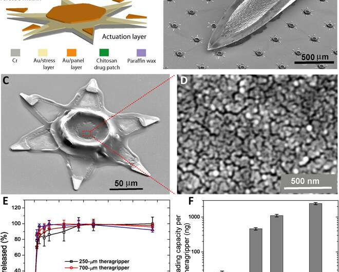 Gastrointestinal-resident, shape-changing microdevices for extended drug delivery
