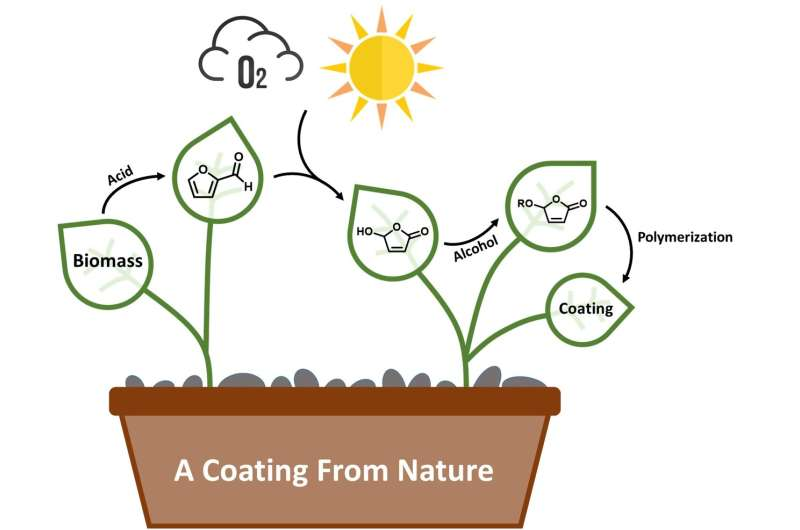 Green chemistry creates coatings from nature