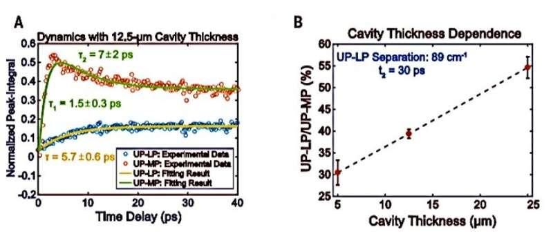 Intermolecular vibrational energy transfer via microcavity strong light–matter coupling