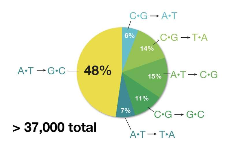 Precision genome editing enters the modern era