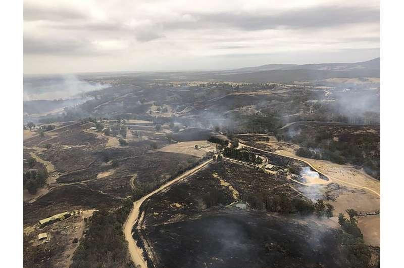 Q&A: How climate change, other factors stoke Australia fires