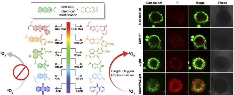Rice lab turns fluorescent tags into cancer killers