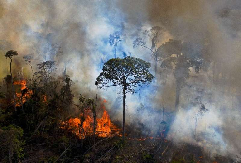 Smoke rises from an illegally lit fire in the Amazon rainforest south of Novo Progresso in Brazil's Para State, in August 2020