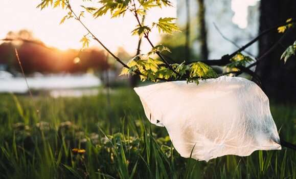 Sustainability manager on the benefits of a plastic bag ban