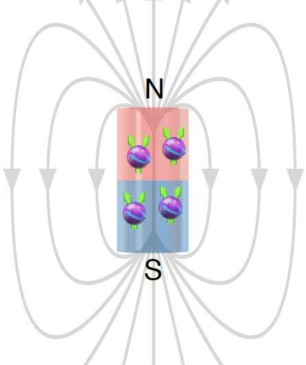 The observation of Bloch ferromagnetism in composite fermions