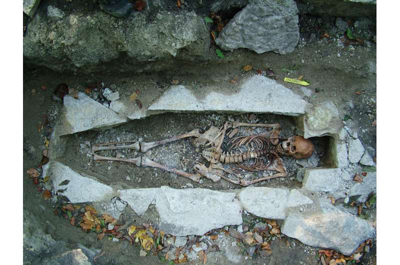 World's largest DNA sequencing of Viking skeletons reveals they weren't all Scandinavian