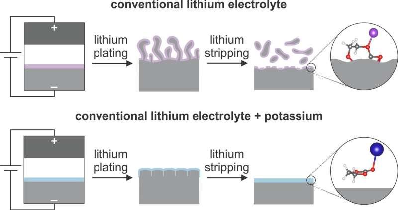 New technique extends next-generation lithium metal batteries