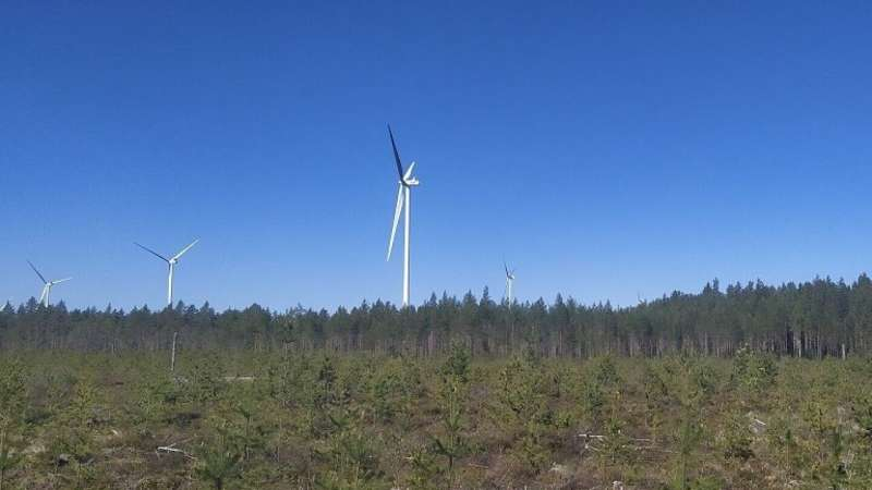 Researchers to investigate wind power effects on bats in the Baltic Sea region